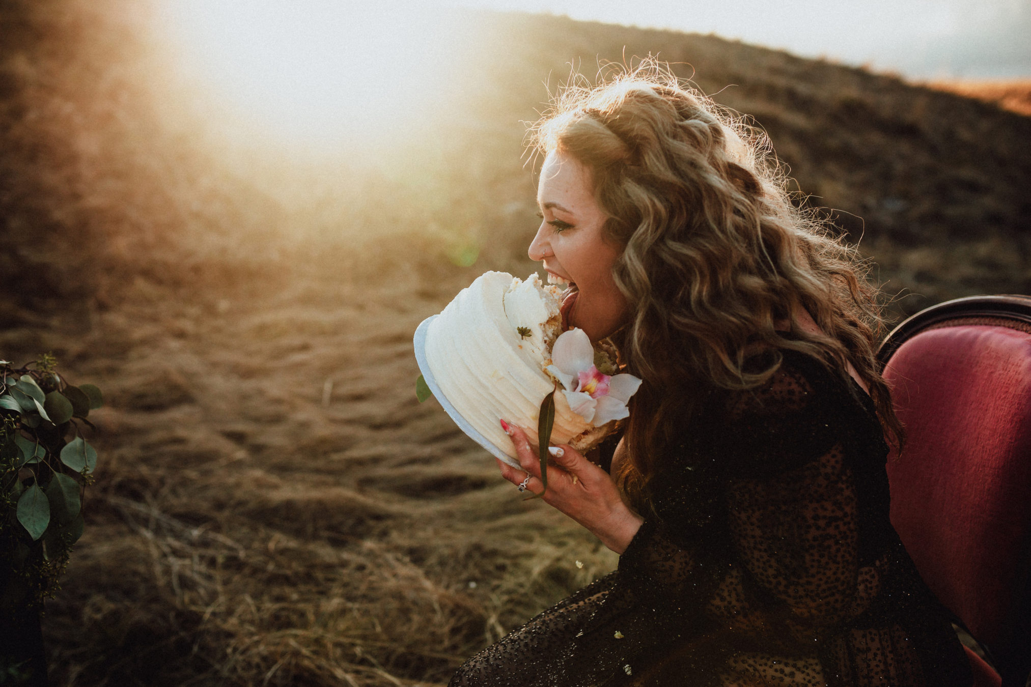 Adult Cake Smash Session in Fort McMurray with Fox and Bird and Emily Gale Photography